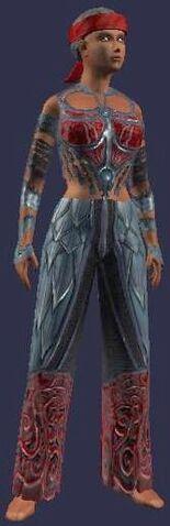 File:Abrupt Pursuasion (Armor Set) (Visible, Female).jpg