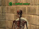 A defiled sentry