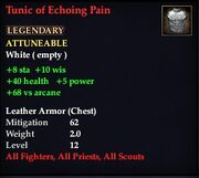 Tunic of Echoing Pain