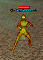 A forgotten assassin