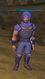 A Blades guard