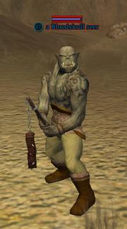 A Bloodskull seer