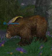 A corrupted bear
