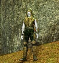 Aery Hunter IV (Apprentice)