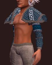 Elder's Shoulderpads (Equipped)