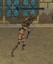A captured mummy