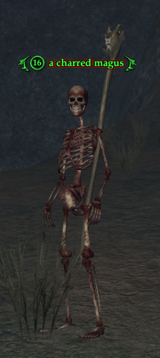 A charred magus
