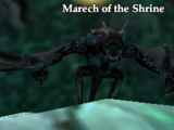 Marech of the Shrine