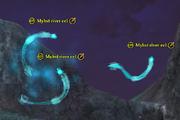 Myhst river eel