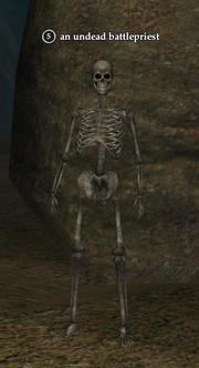 An undead battlepriest (skeleton)