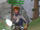A Rime pillager