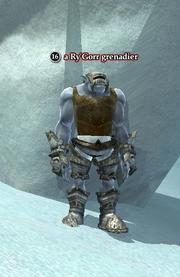 A Ry'Gorr grenadier