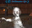 Drillmaster Qix