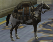 Pack Pony