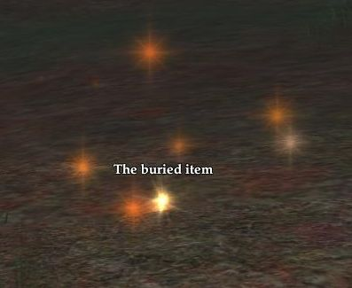 The buried item
