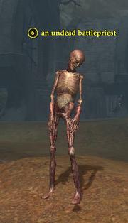 An undead battlepriest (zombie)