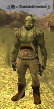 A Bloodskull warlock