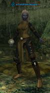 A Darkblade maiden (dark elf)