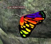 A fae drake warrior