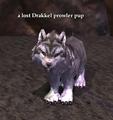 A lost Drakkel prowler pup.png