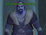 An Ikro Kromise protector