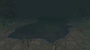 Black Water Lake
