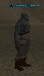 A Bloodskull shaman