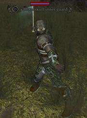 A Bloodskull inner guard
