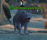 A Frostpaw pack hound