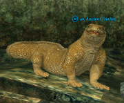 An Ancient Dasher