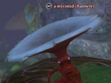 A myconid channeler (solo)