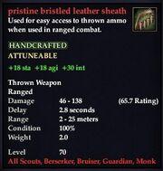 Pristine bristled leather sheath