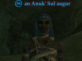An Anuk' Sul augur (Silent City)