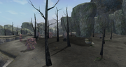 Butcherblock Mountains - Broken Fields, The