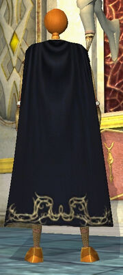 Assassin Master's Cloak Equipped