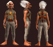 Breastplate of the Last Rite (Equipped)