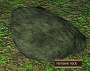 Crawler rock