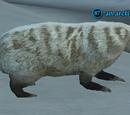 An arctic badger
