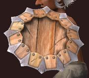 Round Shield of Malformed Werewolf Bones (Equipped)