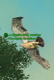 A Mysticwood watcher