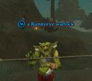 A Runnyeye warlock (Enchanted Lands)