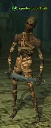 A protector of Tirik