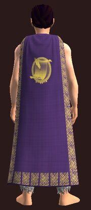 Formal Cloak of the Sage worn