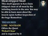 Meat-stripped Skull