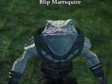 Blip Marrsquire