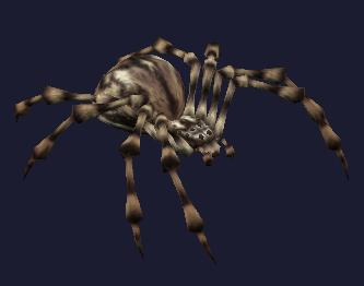File:Race spider.jpg