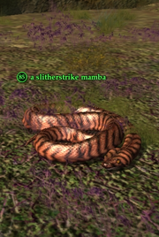 A slitherstrike mamba