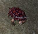 A stoneshell snapper