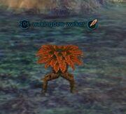 Wakingdew walker