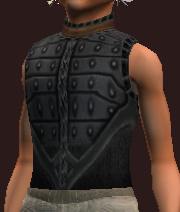 Maestro's Hauberk of the Citadel (Equipped)